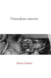 'Naturalezas muertas', de Moisés Galindo (2020)